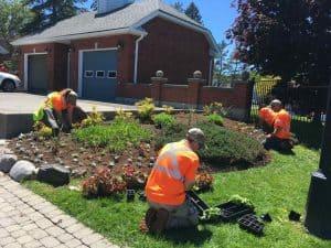 Grounds Maintenance Contractors
